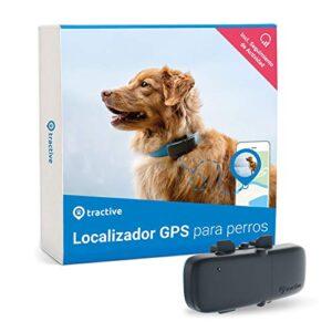 Comprar Gps Perros Localizador Al Móvil Con Envío Gratuito A La Puerta De Tu Casa En Toda España